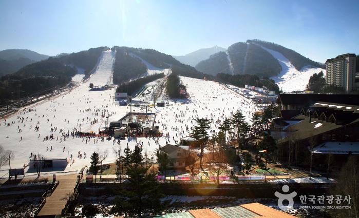 Yongpyong Ski Resort / Foto: Korea Tourism Organization
